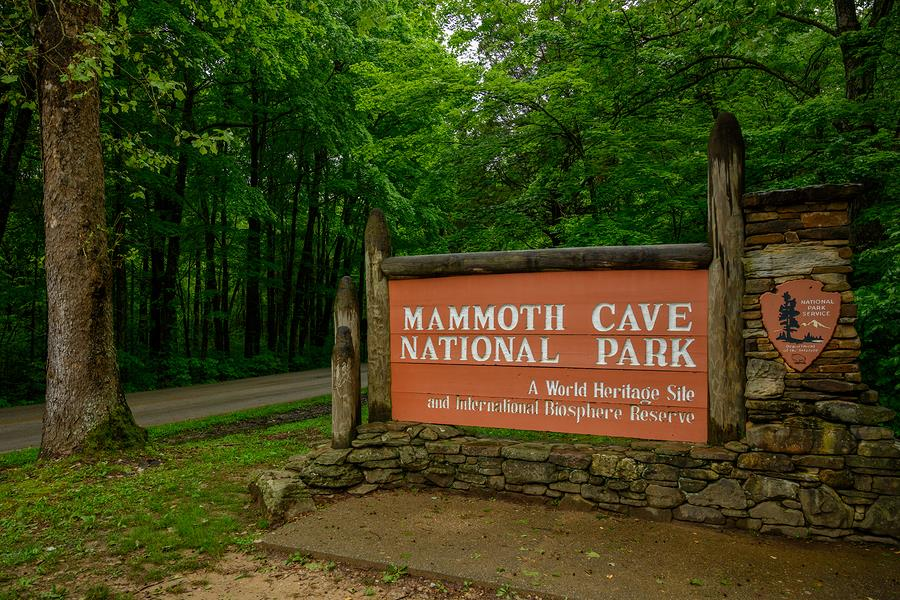 5 Things you Must Do in Mammoth Cave National Park This spring